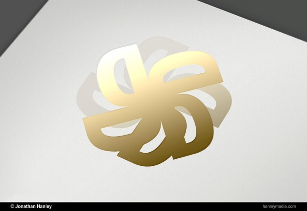vwiff logo mockup